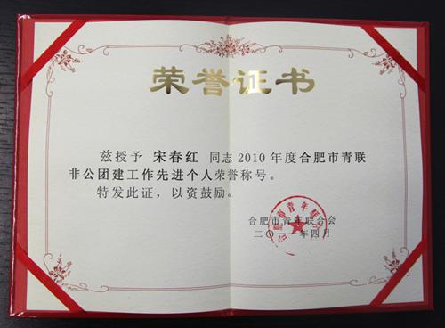 2010年度合肥市青联非公团建工作先进个人(宋总)