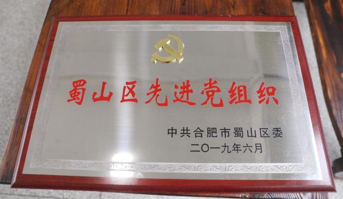 山水裝飾榮獲蜀山區先進黨組織