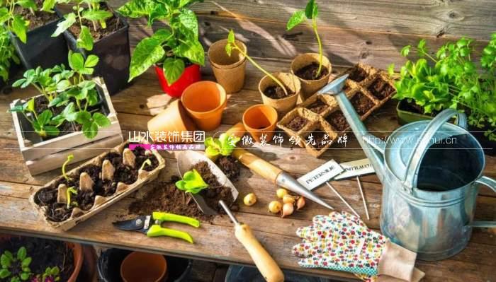 阳台准备种菜有哪些注意事项?
